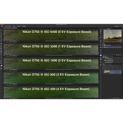Medium Crop Of Nikon D500 Vs D750