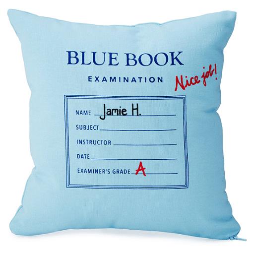 personalized-blue-book-pillow // custom pillow ideas