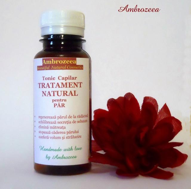 tonic-capilar-tratament-natural-pentru-par-100-ml~l_4462643