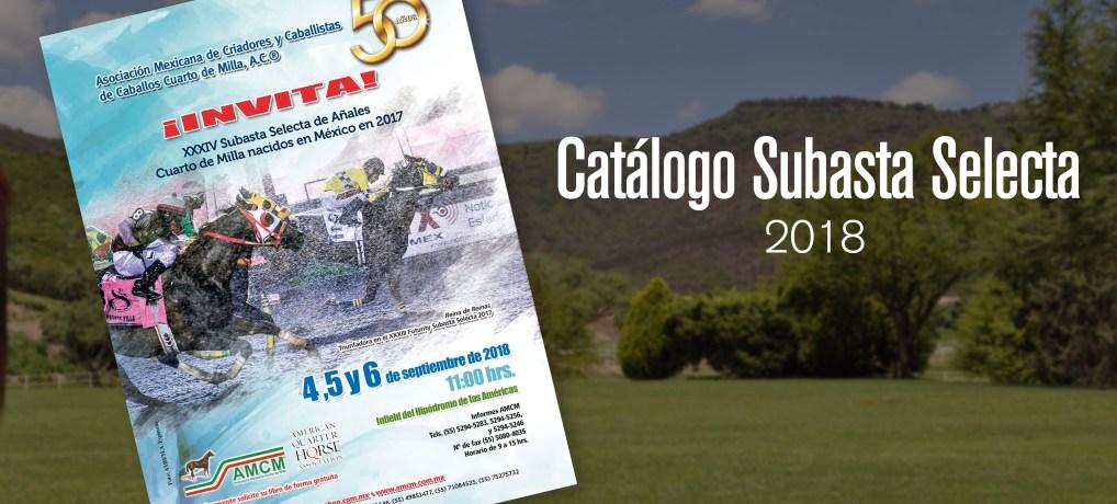 Catálogo Subasta 2018
