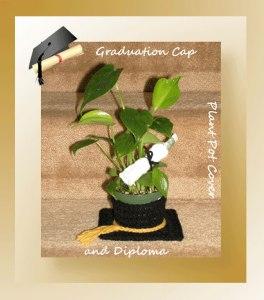 grad-pot-cover-diploma