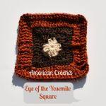 Eye of the Yosemite Square