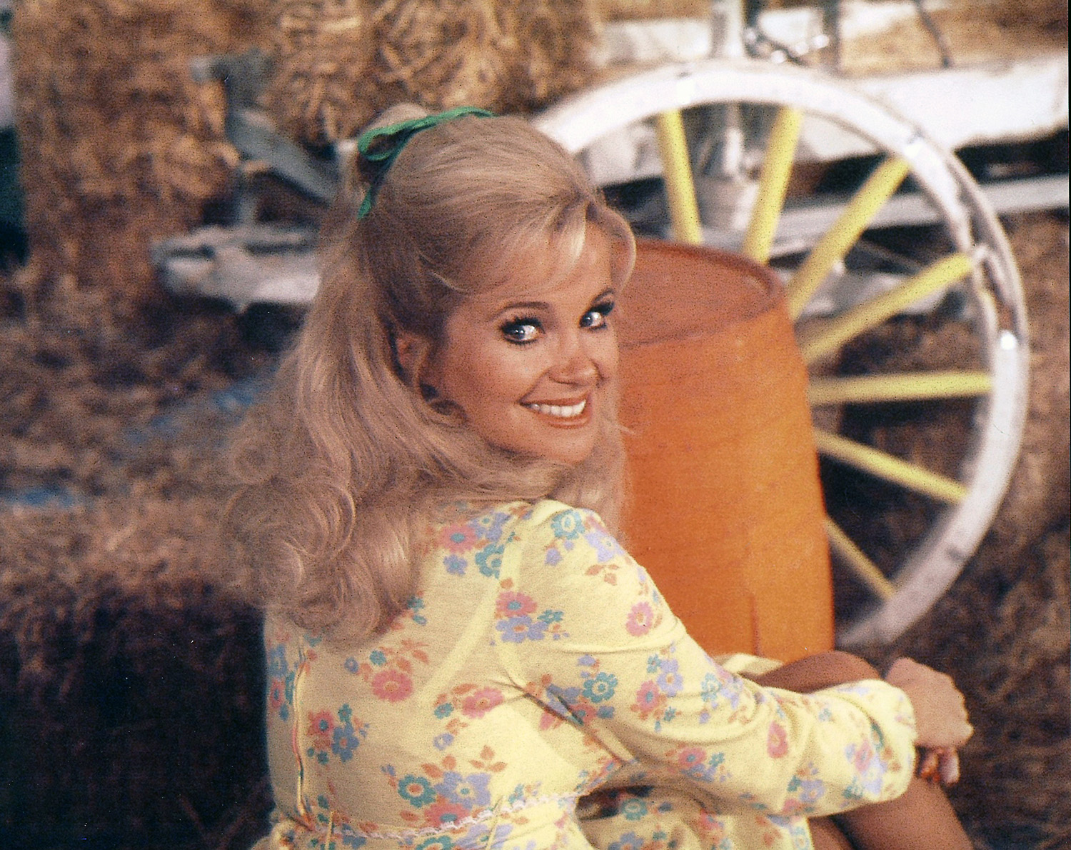 Pictures of hee haw 27 Catchy Boutique Slogans and Taglines