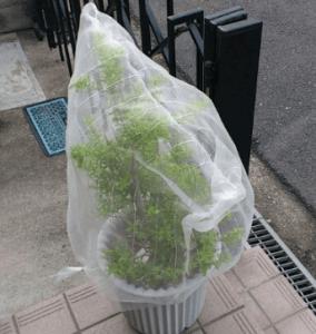 蜂の巣を作らせない方法 防虫ネットで蜂の巣対策