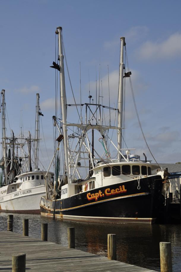 commercial shrimp boats