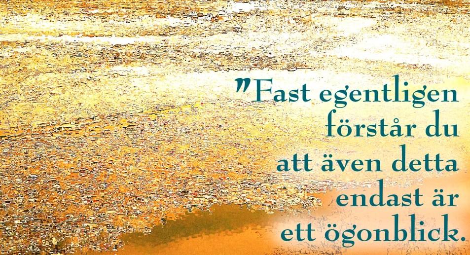 IMG_1352fb-citat