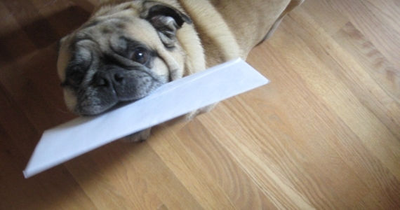 10 REASONS TO USE DIRECT MAIL IN YOUR NEXT MARKETING CAMPAIGN