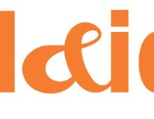 PLAID Branding