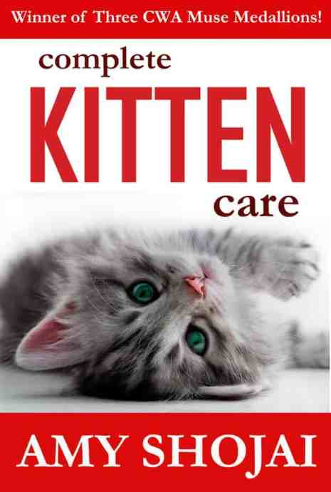 NEW-KITTEN-COVER-kindle