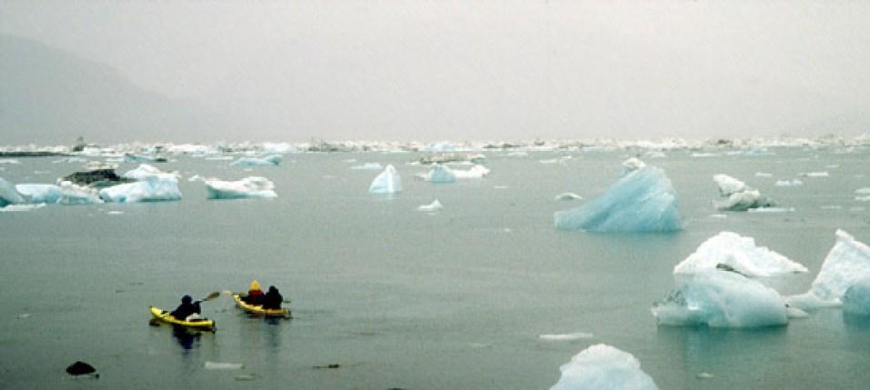 Kayaking through icebergs