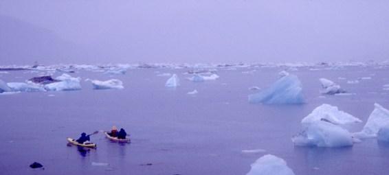 icebergs_fog_kayaks_800