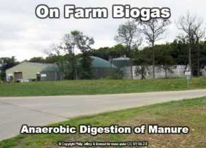 on farm biogas from manure