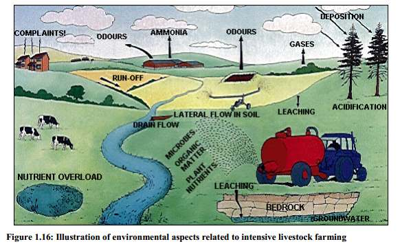intensive farming environmental emissions manure spreading