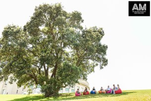 In front of Auckland Museum building people enjoying together seating in footstools under a giant tree