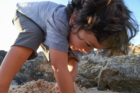 Cute curly haired boy picks seashells in Malolo Fiji