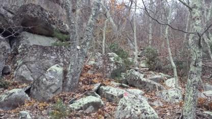 Brimstone Trail rocky