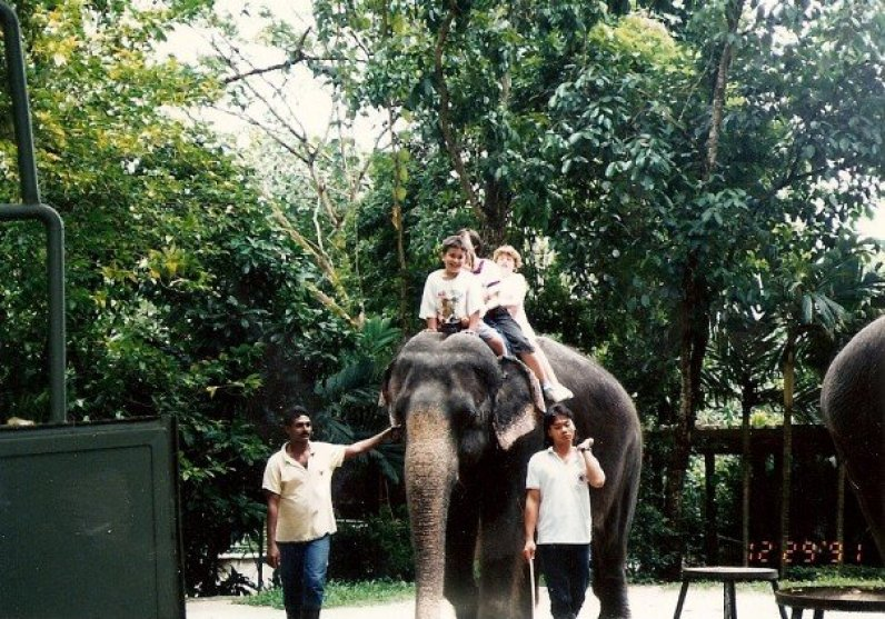 Singapore Zoo- Elephant Ride
