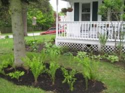 Cosmopolitan Good Garden Karma An Art Farm Grass On Steroids Fps Grass On Steroids Vs Verdant