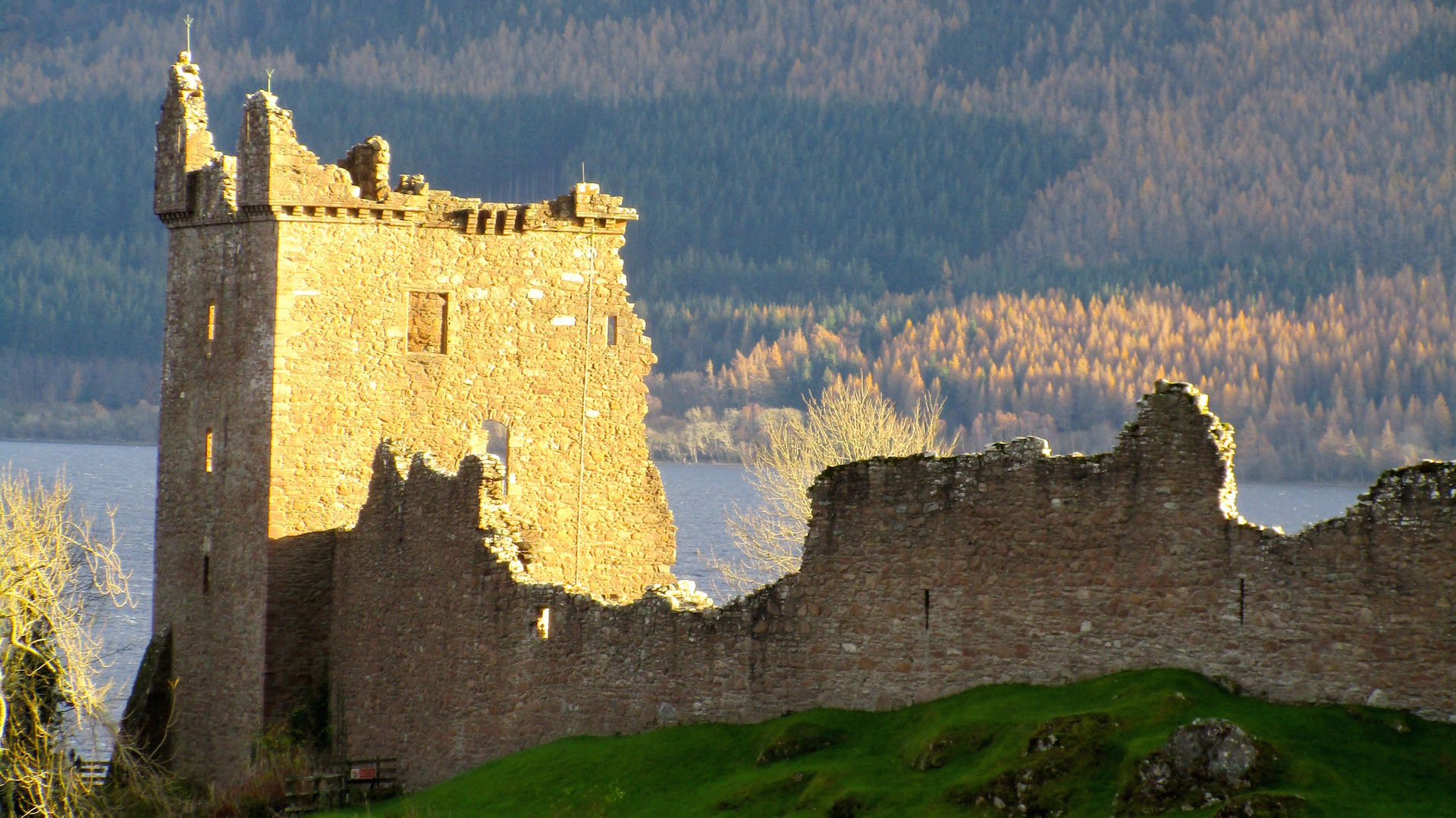 In search of Nessie…