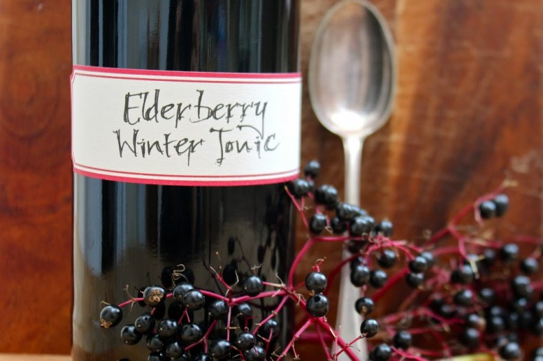 Elderberry Winter Tonic 2