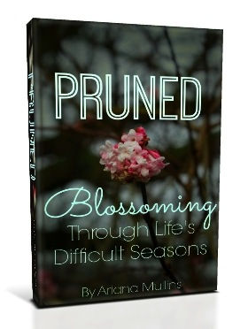 Pruned-Book-Cover