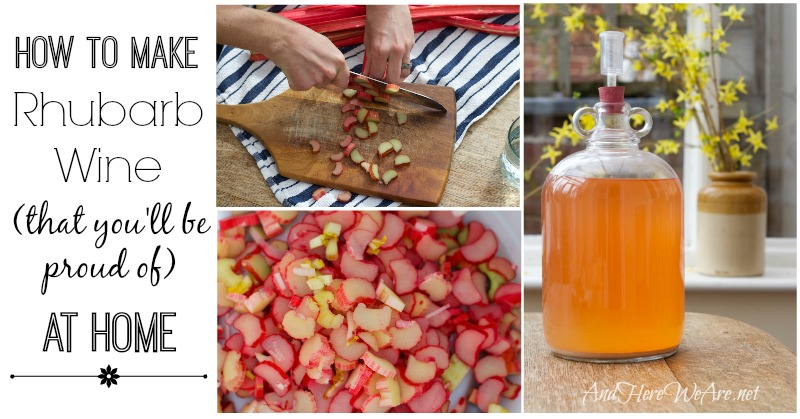 How to Make Rhubarb Wine