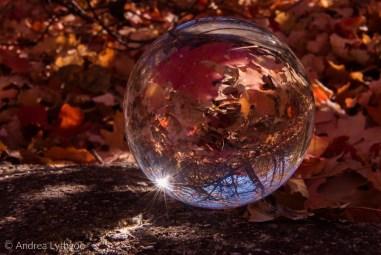 Crystal Ball Shots-5