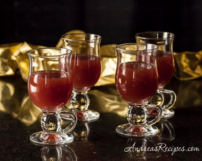 Hot Apple Cranberry Cider - Andrea Meyers