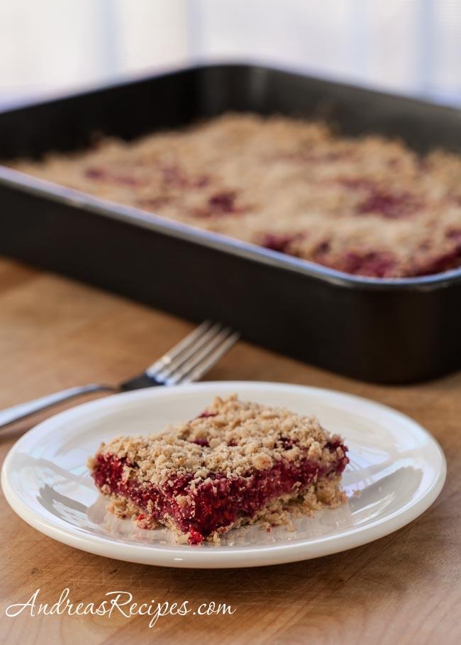 Raspberry Oatmeal Crumble Bars - Andrea Meyers