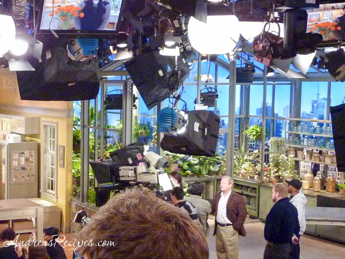 Andrea Meyers - stage left, the Martha Stewart Show