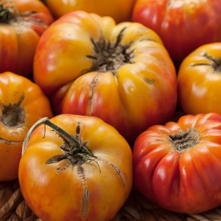 Weekend Gardening: Mr. Stripey Tomatoes - Andrea Meyers