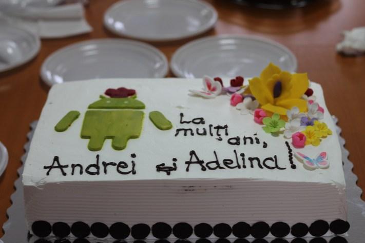 Tortul de MiOS. Android și flori