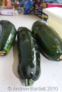 digin_courgette_sept10