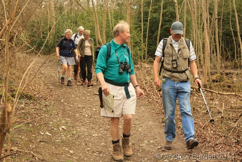 GONE WALKING_The group of walkers in a wooded area.
