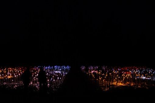 FIELD OF LIGHT, BRUCE MUNRO