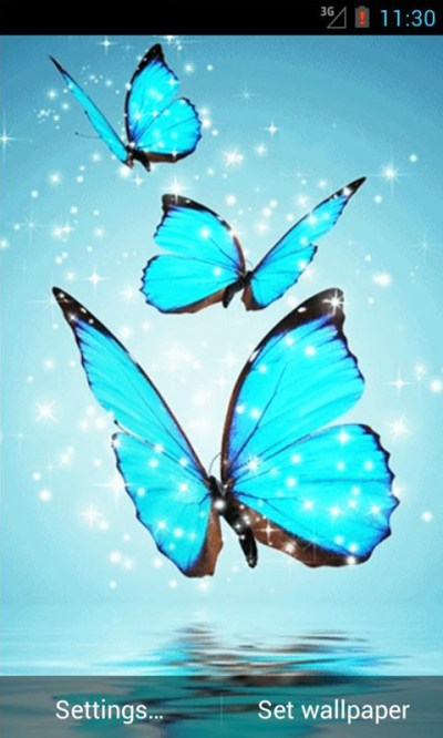 Cyan Butterfly Live Wallpaper Android App APK by andapplique