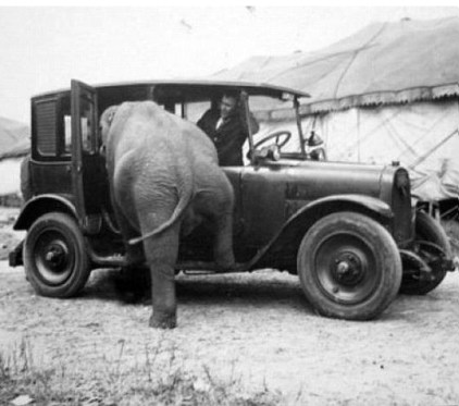 Elephant & Auto - on Frugal Guidance 2 - http://andybrandt531.com