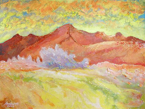 Salar de Uyuni: Geysir