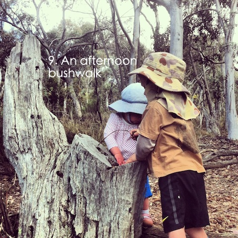 bush walking with preschoolers and toddlers an everyday story This Week… 4/52