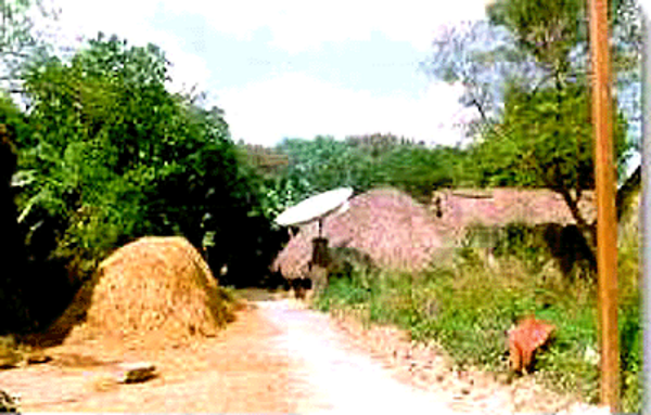 ruralindiacabletv600