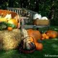 AnExtraordinaryDay.net {31 Extraordinary Days} Pumpkinizing | Outdoor display of Pumpkins and Longaberger Baskets