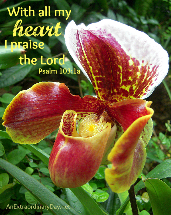 With all my heart  :: Psalm 103:1a :: AnExtraordinaryDay.net