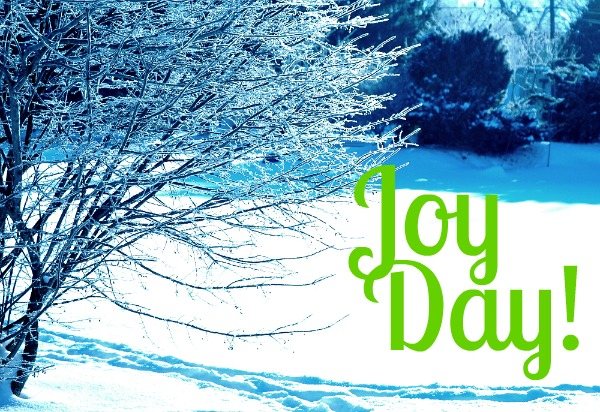 Joy Day!  ::  Join in an Count Blessings :: AnExtraordinaryDay.net