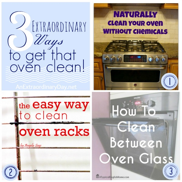3 Extraordinary Ways to Get that Oven Clean ::  AnExtraordinaryDay.net