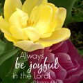 Always be joyful in the Lord! - Philippians 4:4 - 8x10 Printable :: AnExtraordinaryDay.net