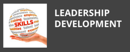 Leadership dev