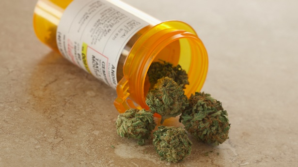Senate Bill Would Have Major Impact on Medical Marijuana Laws