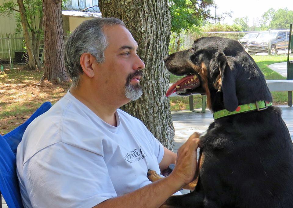 Майданчики та парки для собак в Америці
