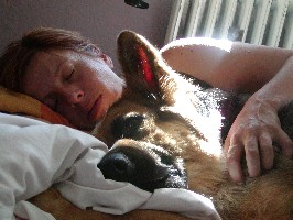 Отель для домашніх тварин у Польщі