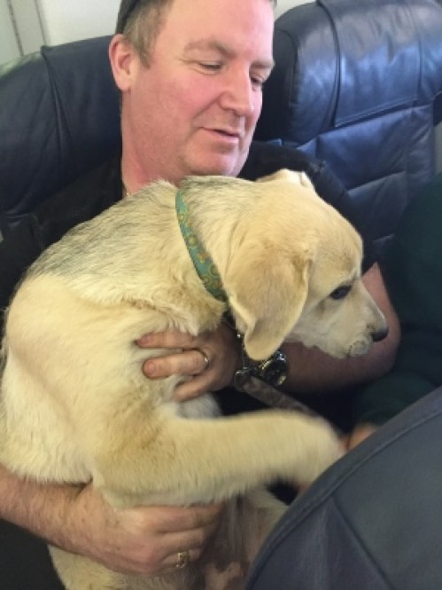 canadian-north-passenger-with-dog-may-2016